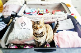Luggage Size: The Complete Guide