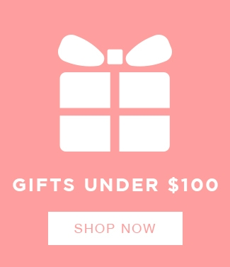 Shop Christmas Gift Ideas under $100